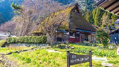 DSC01346 (Neo 's snapshots of life) Tags: japan 日本 京都 kyoto amanohashidate 天橋立 あまのはしだて sony a73 a7m3 24105 伊根