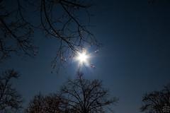 Moon vs. Tree / @ 18 mm / 2018-03-30 (astrofreak81) Tags: fullmoon vollmond mond luna clouds wolken moon stars light night sky dark canon eos 1000d dresden 20180330 astrofreak81 sylviomüller sylvio müller