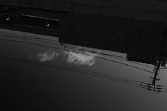 L1100950 (Zengame) Tags: leica leicasl leicasltyp601 oshiage sl summilux summiluxsl50mmf14asph japan tokyo typ601 ズミルックス ズミルックスsl ライカ 押上 日本 東京 東京都 jp