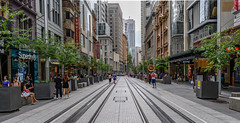 Sydney NZ7_2308