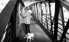 Barnard Castle . (wayman2011) Tags: colinhart fujifilmxe2s fujifilmxf35mmf2 lightroom5 wayman2011 bw mono rural footbridges people dogs doris jackrussels pennines dales teesdale barnardcastle countydurham uk