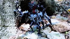 Bionicle M.O.C. - Rima, the Fallen Hero/Iron Dragon (V2) (Makuta Alvarez) Tags: hero fallen dragon iron toa bionicle lego rima moc grey gray black wyvern tentacle elbow blade sword blades wings wing bat rahi makuta