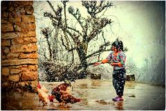 💛     K U R D I S T A N        كوردستان🌟 (Kurdistan Photo كوردستان) Tags: k u r d i s t a n kurd kurdish koerdistan qasimlo war world erbil efrînê refugee revolution rojava turkey turkish yezidism yârsânism unhcr usa iraq iran national peshmerga arbil anfal art syria syrian democracy democratic duhok zagros zaxo mahabad newroz barzani love freedom genocide herêmakurdistanê hawler kurdistán lalish العراق كوردستان و كورد الشرق الاوسط العالم العربي الحدث قناة العربية تركيا