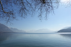 Lake Annecy @ Parc Charles Bosson @ Annecy (*_*) Tags: 2019 winter hiver february sunny europe france hautesavoie 74 savoie annecy lacdannecy lakeannecy parccharlesbosson lac lake park