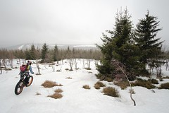 Freeride Snow (all martn) Tags: erzgebirge osterzgebirge oremountains krusnehory winter schnee snow fatbike fettrad mtb