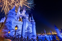 Castle Fireworks | Magic Kingdom (Pandry 2015) Tags: fantasyland nightphotography canon6d canon themepark vacation travel tourism orlando eveninglight fireworks magickingdom waltdisneyworld disneyworld disney wdw