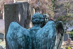 Friedhof (Frank Guschmann) Tags: 8 engel engelsflügel friedhof liesenstrasse frankguschmann nikond500 d500 nikon