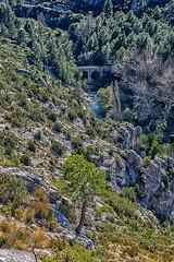 RIU SÉNIA (juan carlos luna monfort) Tags: puente elsports montaña arbol pino paisaje landscape hdr rocas piedras nikond7200 sigma1750 calma paz tranquilidad