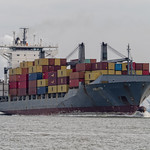 Containership Violetta - Westerschelde - Zeeland thumbnail