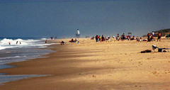 beach / cape henlopen delaware (bluebird87) Tags: cape henlopen delaware dx0 c41 epson 4490 lightroom