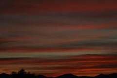 Sunrise 1 16 19 #05 (Az Skies Photography) Tags: sun sky skyline skyscape rio rico arizona az riorico rioricoaz arizonasky arizonaskyline arizonaskyscape cloud clouds red orange gold salmon black january 16 2019 january162019 11619 1162019 canon eos 80d canoneos80d eos80d canon80d arizonasunrise rise sunrise morning dawn