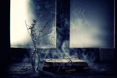Abandoned Memories (Davide Solurghi Photography) Tags: davidesolurghiphotography davidesolurghi stilllife naturemorte naturamorta flower fleurs fiori vetro glass books libri fumo smoke vapore steam conceptual concept concetto concettuale abandoned memories
