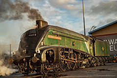 A4 Pacific, 60009 Union of South Africa at York (Bobchofos) Tags: rails 60009 africa south museum york station railway engine steam pacific a4