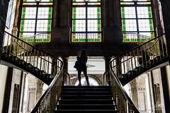 """Contraluz imperial"" (Alyaz7) Tags: nikond7200 lentenikonnikkorafs1855mm13556giidxvr escaleras stairs contraluz backlight arquitectura architecture castillodechapultepec méxico historia history"