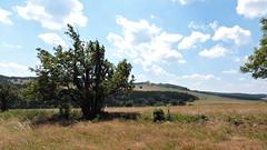 2018-07-14 Mountains Landscape (beranekp) Tags: czech landscape landschaft krušné hory erzgebirge komáří vížka habartice fojtovice poštovka
