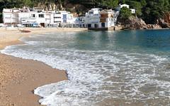 TAMARIU (Joan Biarnés) Tags: tamariu baixempordà costabrava girona catalunya paisatge paisaje 285 panasonicfz1000