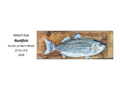 "Rockfish • <a style=""font-size:0.8em;"" href=""http://www.flickr.com/photos/124378531@N04/46380890514/"" target=""_blank"">View on Flickr</a>"