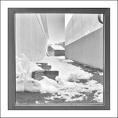 Out the Back Door... (Timothy Valentine) Tags: blackandwhite 0319 52weeks bench shed silverefex misc snow they 2019 door eastbridgewater massachusetts unitedstatesofamerica us framewithinaframe week102019 startingtuesdaymarch052019 52weeksthe2019edition