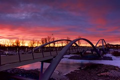 Morning Bridge (John Andersen (JPAndersen images)) Tags: bluehour bowriver bridge calgary canon cityskyline cold evening steam trees winter