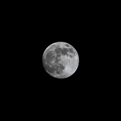Waxing Gibbous - 99.1% - 18-02-19 (dalejckelly) Tags: canon canon7dmarkii canon100400f4556lisusm lunar lunarphases moon moonphases themoon waxinggibbous astrophotography astronomy astro