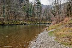Kupa nedaleko Kočičina (MountMan Photo) Tags: rijekakupa kočičin gorskikotar primorskogoranska croatia voda water zima winter flickrunitedaward