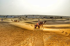 In the midst of Great Indian desert (nameiskranthi) Tags: camelride india desert sun hotday breezy travel tourism rajasthantourism hotwinds sand sanddunes photography shots wanderer