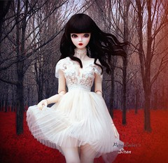 Red Forest ❤️ (pure_embers) Tags: angel philia angelphilia sizuka pink drops obitsu48 emberssiren siren uk england doll dolls pure laura embers pureembers girl gothic goth obitsu snow white dress red forest bjd