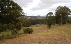 559 Minimbah Road, Nabiac NSW