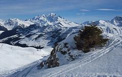 DSCF3714 (Laurent Lebois ©) Tags: laurentlebois france nature montagne mountain montana alpes alps alpen paysage landscape пейзаж paisaje savoie beaufortain pierramenta arèchesbeaufort