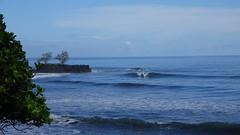 Polynésie 2019 - Tahiti (Valerie Hukalo) Tags: papenoo hukalo valériehukalo tahiti polynésiefrançaise polynesia océanpacifique pacificocean archipeldelasociété archipel island île océanie polynésie françaisefrench polynesiaocéan pacifiquepacific oceanfrancearchipel de la société