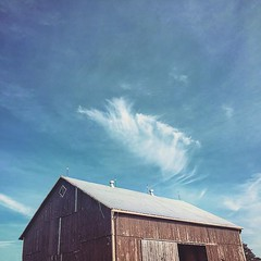Just because I can (increase the sharpness and saturation.) (jessalynn_sammons) Tags: iphone old ag roof cloud clouds blue bluesky agriculture barn instagram ifttt