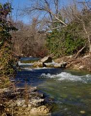 Austin stream scene (mwmosser) Tags: creek stream austin