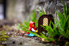 There's always something behind a door (Ballou34) Tags: 2019 7dmark2 7dmarkii 7d2 7dii afol ballou34 canon canon7dmarkii canon7dii eos eos7dmarkii eos7d2 eos7dii flickr lego legographer legography minifigures photography stuckinplastic toy toyphotography toys stuck in plastic little red riding hood door grass dress
