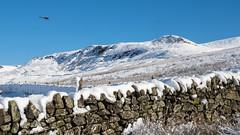 Shelf Benches (Maria-H) Tags: hills snow winter peakdistrict pennines glossop derbyshire highpeak uk olympus omdem1markii panasonic 1235 wall