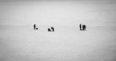 Winter fishing (pellevelandia) Tags: fotosöndag negative space fishing winter stockholm