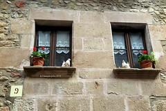 La Villa Medieval.Detalle.Sata Pau-La Garrotxa. Girona. (lameato feliz) Tags: canon powershot g1 x mark ii ƒ40 228 mm 180 100