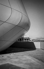 C08_F80_20190204_023_JPEG 2000 (Domenico Cichetti) Tags: milano citylife olympus olympusxa studional fomapan100 monocrome bw blackwhite blackandwhite bn argentique selfdevelope architecture