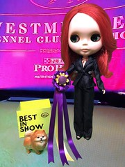 Tiny Tator Tot takes BEST IN SHOW under distinguished judge, Dr. Rouge Noir at the 143rd Westminster Dog Show. (Stock outfit. Crafted BIS Ribbon) (Painters Life) Tags: bestinshow pomeranian westminsterdogshow takara blythe rougenoir