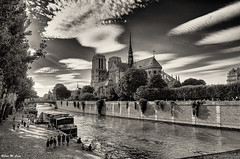 Catedral de Notre Dame (Jose Manuel Cano) Tags: paris notredame catedral cathedral nikond5100 ciudad town stone piedra byn bw