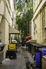XPro2-2019-0466 (Mark*f) Tags: worthavenue archway bench bougainvilleavines courtyards figs fountain orchids succulents views window