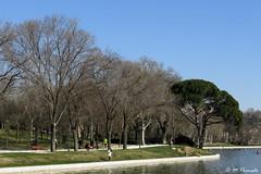 013716 - Madrid (M.Peinado) Tags: árbol árboles lago estanque retiro parquedelretiro madrid comunidaddemadrid españa spain 2019 febrerode2019 09022019 ccby canonpowershotsx60hs canon