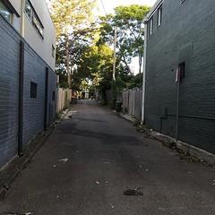 Light and shadow play on lanes in Glebe, Sydney - #lightandshadowplayonlanes #light #shadow #lane #Sydney #Glebe #urbanstreet #urbanfragments #urbanandstreet #streetphotography #garbagebins #treeoverpath (TenguTech) Tags: ifttt instagram lightandshadowplayonlanes light shadow lane sydney glebe urbanstreet urbanfragments urbanandstreet streetphotography garbagebins treeoverpath