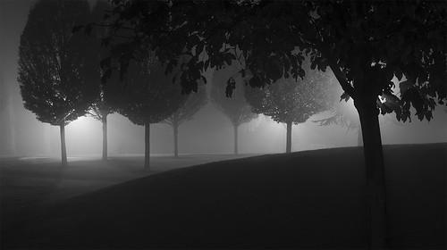 {Foggy Night}FCC170