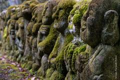 Rakan - Otagi Nenbutsu-ji #2 (GilBarib) Tags: voyage rakan xt3 kyoto travel fujix gillesbaribeauphoto fujifilm otaginenbutsuji gilbarib xf1655mm xf1655mmf28rlmwr japan japon