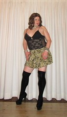velvet, cougar and lace (Barb78ara) Tags: blackvelvet blackvelvetboots velvetboots highheels highheelboots stilettohighheelboots lace lacebody animalprint animalprintskirt cougarprint cougarskirt