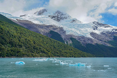 At Lago Argentino lake / На озере Архентино (Vladimir Zhdanov) Tags: travel argentina patagonia lagoargentino glacier water landscape lake ice snow tree forest mountains mountainside sky cloud