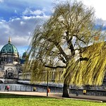 The Berlin Cathedral at the spring thumbnail