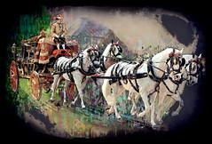 Royal Horses (SØS: Thank you for all faves + visits) Tags: coach color corlorful digitalartwork art kunstnerisk manipulation solveigøsterøschrøder artistic horse man photomanipulation red 100views