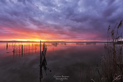 Albufera Sunset (Carlos Server Photography) Tags: canon canon5dmark3 canonespana 1635mm sunset puestadesol nubes sky cielo clouds redes largaexposición longexposure paisaje landscapes albufera valencia spain sol sun filtros haida manfrotto benro