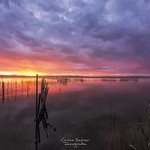 Albufera Sunset thumbnail